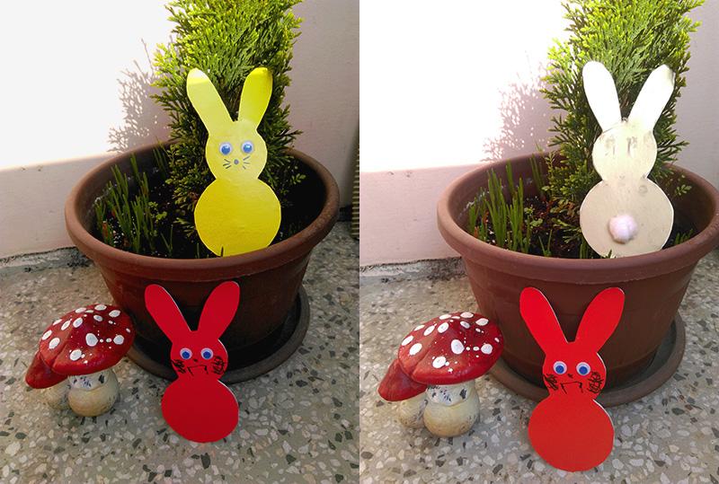 bunny-all